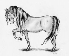 Horse drawing by Elea Haugen, via Flickr