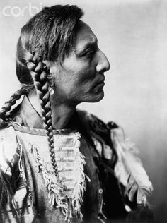 Spotted Bull by Edward S. Curtis