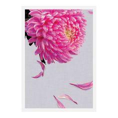 Design Mondo Pink Petals Wall Art