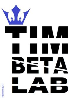 * REI * TIM * BETA LAB