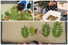 We took the children on a nature walk so they could make some observations about things they noticed in the natural environment. Although not many leaves had yet changed colours, there were severa…