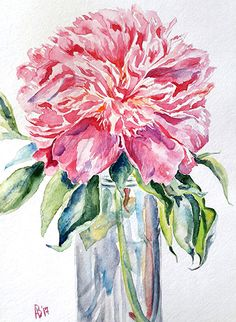 #peony_watercolor #watercolor_painting #watercolor_flower #floral_clipart