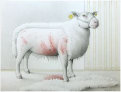 "Jane Lewis ""Earthlings - Shorn & Scarred"" (graphite and coloured pencil on paper) Jane Lewis, Coloured Pencils, Vanitas, Sheep, Graphite, Gallery, Paper, Friends, Art"