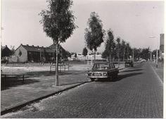 1957: Leeuwerikstraat