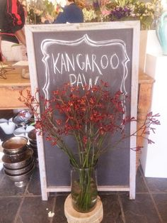 """FLOWERS 101: Kangaroo Paw 'These perennial plants are noted for their unique bird attracting flowers. The tubular flowers are coated with dense hairs and open at the apex with six claw-like structures: from this paw formation the common name """"Kangaroo Paw"""" is derived.'"""