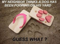 Neighbors Revenge!