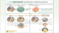 4. Základní kombinace živé stravy