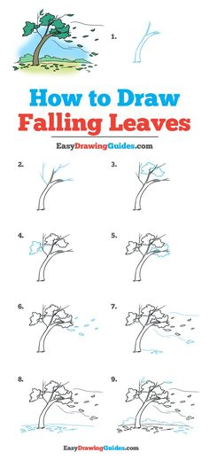 Learn How to Draw Falling Leaves: Easy Step-by-Step Drawing Tutorial for Kids and Beginners. See the full tutorial at easydrawingguides…. The post How to Draw Falling Leaves autumn scenery autumn scenery appeared first on Trendy. Easy Flower Drawings, Fall Drawings, Flower Drawing Tutorials, Drawing Tutorials For Kids, Drawing For Kids, Drawing Flowers, Flower Drawing Tutorial Step By Step, Trees Drawing Tutorial, Flower Step By Step