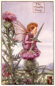 THE THISTLE FAIRY by Cicely Mary Barker.