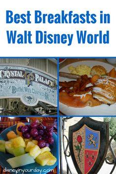 Best breakfasts in Disney World - Disney in your Day