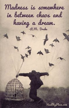 Quote on mental health: Madness is somewhere in between chaos and having a dream.  www.HealthyPlace.com