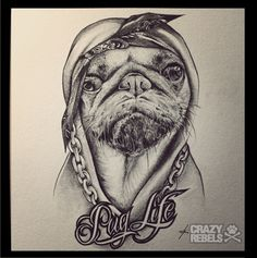 Hand drawn pug life. Oh, for sure. #pug