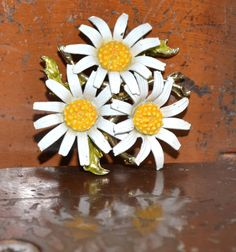 A beautiful cluster of daisies with a 1960s feel.