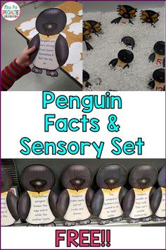 Students will learn penguin facts with this FREE penguin set. My students loved having the sensory bin be part of the lesson. This was perfect for my self-contained classroom for students with autism and other language based disabilities.