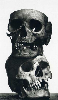 irving penn #skulls