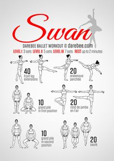 Ballet Workout. If you're a newb like me, you'll feel it for sure. | Darebee  zumba,zumba workout,zumba videos,zumba quotes,zumbaaa