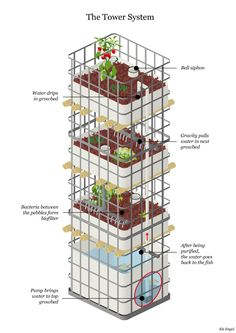 aquaponics tower
