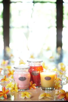 Highly Scented jarred candles http://www.saltcitycandle.com.au/    Home & Giving Fair Feburary 2013.