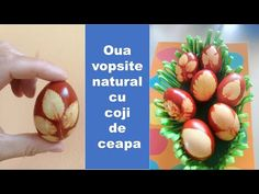 Cum se vopsesc ouale de Paste natural How to naturally dye eggs for Easter Egg Dye, Eggs, Natural, Youtube, Egg, Nature, Youtubers, Egg As Food, Youtube Movies
