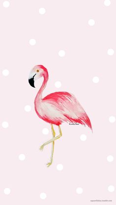 A pink flamingo Flamingo Nursery, Flamingo Art, Pink Flamingos, Wallpaper Cellphone, Iphone Wallpaper, Flamingo Wallpaper, Cool Wallpaper, Pretty Backgrounds, Wallpaper Backgrounds
