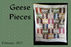 Geese Pieces Quilt