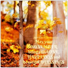 May your NOVEMBER bring you LOVE, HAPPINESS and beautiful BLESSINGS  https://www.facebook.com/UpsDownsRoundabouts/photos/p.1734847963216603/1734847963216603/?type=3&theater
