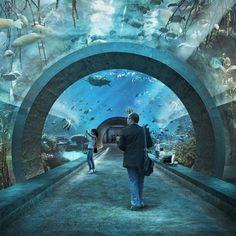 Basel Aquarium by Boltshauser Architekten