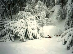 Winterstürme beeinträchtigen Flugverkehr in den USA von Falk Werner · http://reisefm.de/luftfahrt/winterstuerme-beeintraechtigen-flugverkehr-den-usa/ · Die neuen Winterstürme in den USA haben wieder für zahlreiche Flugausfälle gesorgt und behindern auch immer noch den Verkehr.