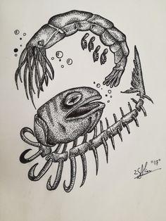 fineliner , dot work, Shrimp, fish, skeleton, illustration