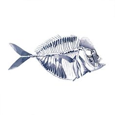 Blue Fishbone tattoo Pattern Tattoo Temporary by ArrowTattoo