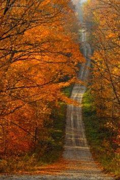 Through Autumn woods...