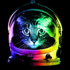 Unisex Adult Clothing Space Cat T-Shirt Kitty Astronaut Helmet Galaxy Neon Colors Youth And Adult Tee Astronaut Helmet, Cat Astronaut, Rainbow Photo, Cat Posters, Funny Posters, Space Aliens, Cat Pillow, Space Cat, Neon Colors