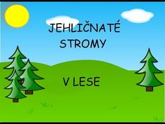 Jehličnaté stromy - učíme se poznat jehličnaté stromy v lese - nejen pro děti - YouTube Autumn Activities For Kids, Homeschool, Language, How To Plan, Education, Youtube, Languages, Onderwijs, Homeschooling