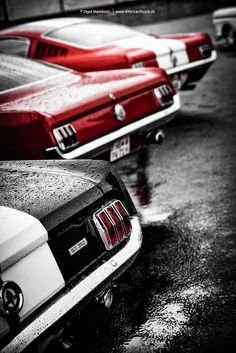 Fastbacks | Ford Mustang Fastbacks @ Street Mag Show Hamburg… | Flickr