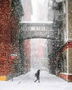Staple Street, NYC - Winter Storm Niko 2.9.17 | Instagram photo by @constantism