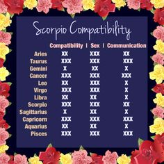 Scorpio compatibility. Me and my Capricorn knock it out of the park. So happy :)