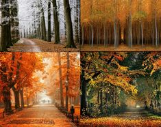 Autumn is the most beautiful time of the year