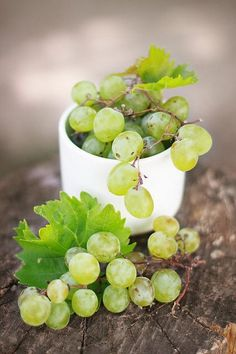 Green grapes are my all-time favorite fruit! From my misty morning Fruit And Veg, Fruits And Vegetables, Fresh Fruit, Photo Fruit, Fruits Photos, Fruit Photography, Think Food, Beautiful Fruits, Green Grapes