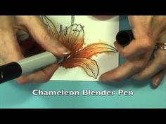 Luminous Lily - YouTube how to color with Chameleon