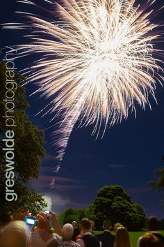 Wedding fireworks at Somerford Hall, Brewood, Staffordshire Wedding Fireworks, Wedding Photography, Wedding Ideas, Flowers, Wedding Photos, Wedding Pictures, Royal Icing Flowers, Flower, Florals
