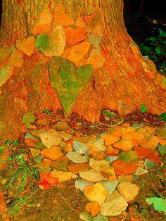 flickr heart rocks