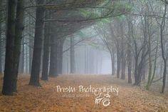 #prismphotography #photography #wisconsin #oconomowoc #photographerinwisconsin #foggy #fog #fogphotography #winterinwisco #winter