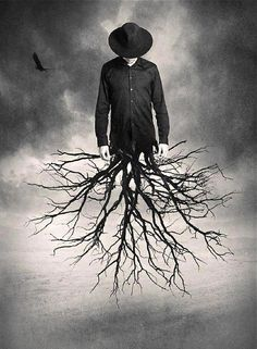 We all need to have roots somewhere...