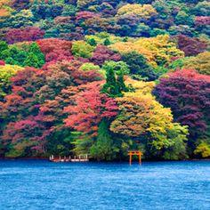 Ashi Lake, Japan- by Ricardo Bevilaqua