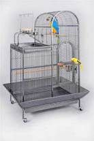 Kaytee Parakeet Treat Play-n-lear Bird Cage {bin-2} – $26.55 Kaytee Cockatiel Treat Play-n-lear Bird Cage {bin-2} – $44.45 Prevue Pet Products The Madison Small To Medium Bird Cage Stardust Putty {bin-2} – $115.06 Living World Sepia Bird Cage {requires 3-7 Days before shipping out} – $63.49 Living World Ruby Bird Cage{requires 3-7 Days before shipping out} – $39.68 Living World Sol Bird Cage{requires 3-7 Days before shipping out} – $123.86 Living World Royal Bird Cage …  Continue reading
