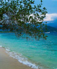 Isla Larga Edo. Carabobo Venezuela Venezuela Beaches, South America Travel, Fauna, The Good Place, Beautiful Places, National Parks, Places To Visit, Around The Worlds, Landscape