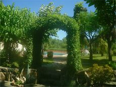 Sardinia Residence Vacation Apartment Rentals By Owner - Touring around the gardens that surround the villa apartment rentals.