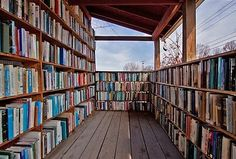 Bookshelf lined screened in porch. What a lovely idea.