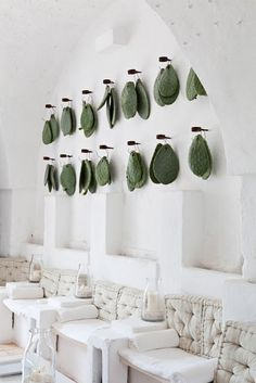 Cactus trend items - cactus leaves on the wall