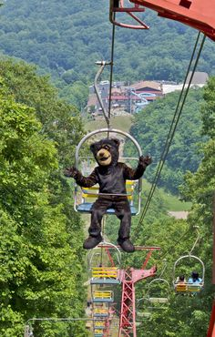 Ride the Gatlinburg Sky Life and see some of the best views in the Smokies. $13 for adults.